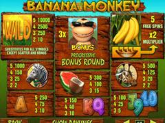 Banana Monkey paytable