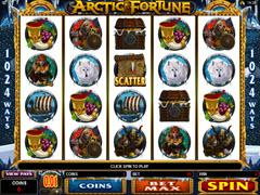 Arctic Fortune Pokie