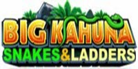 Big Kahuna - Snakes and Ladders