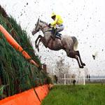 Cheltenham Festival Horse Race