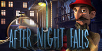 After the Night Falls logo