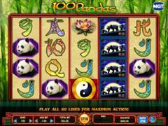 100 Pandas pokie