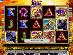 Cats 30 pokie