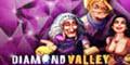 Diamond Valley logo