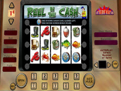 Reel in the cash pokie