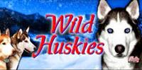 Wild Huskies logo
