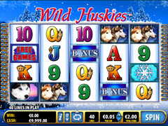 Wild Huskies pokie