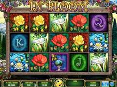 In Bloom pokie