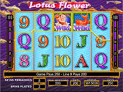 Lotus Flower pokie