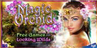 Magic Orchid logo