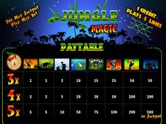 Jungle3